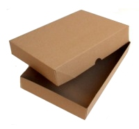 "RX Box & Lid 410x380x75mm (16.5""x15""x3"")"